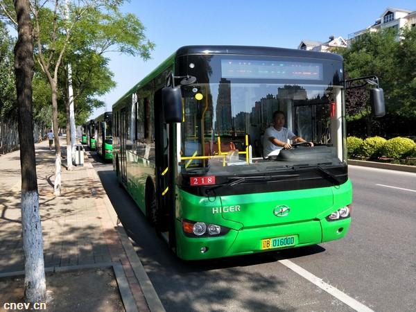 30辆客车 1100公里路 海格纯电公交..