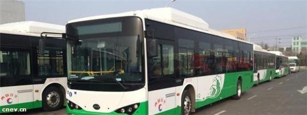 山东青岛:62辆纯电动公交跑隧道