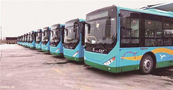 103輛新能源公交投入使用 純電動公交車亮相東營