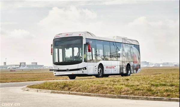 比亚迪获机场订单!30台纯电动大巴驶入布鲁塞尔